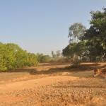 Govindalaya-Twentythree