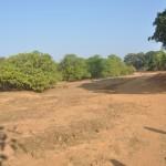 Govindalaya-Twentyfour